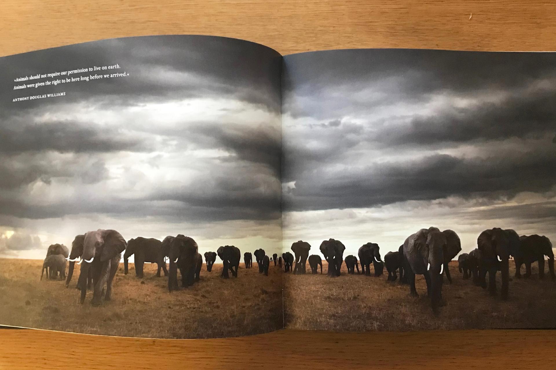 Afrikaboken_PAGE-11