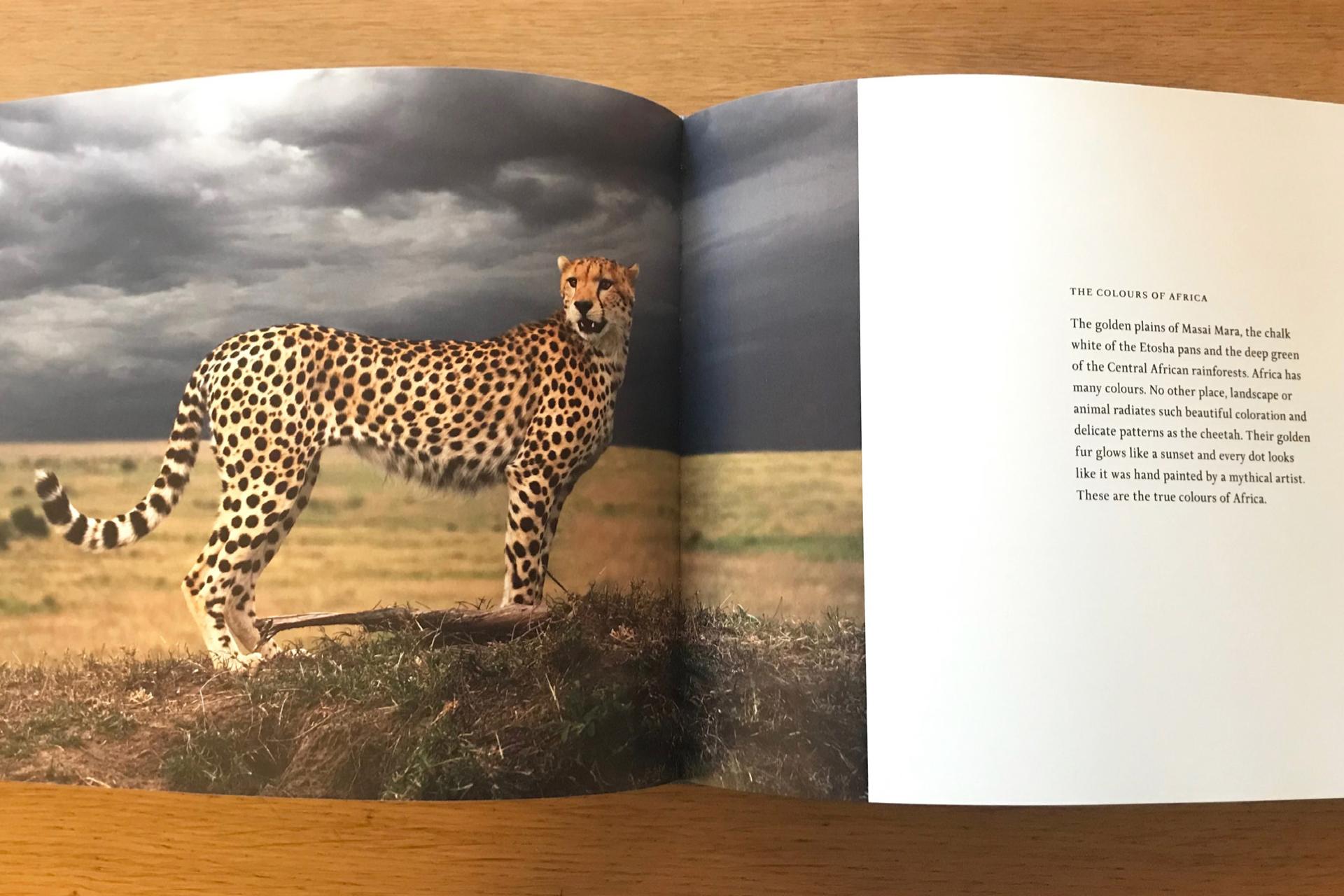 Afrikaboken_PAGE-12