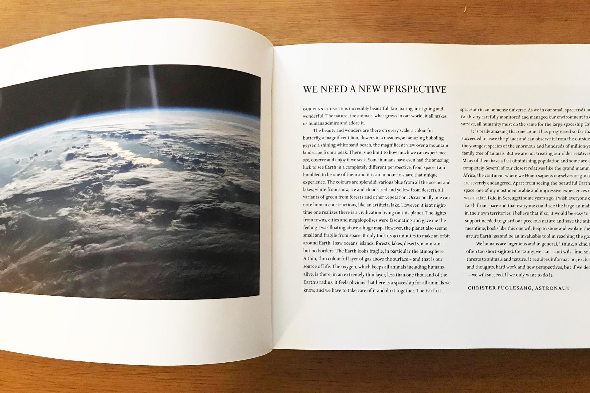 Afrikaboken_PAGE-7