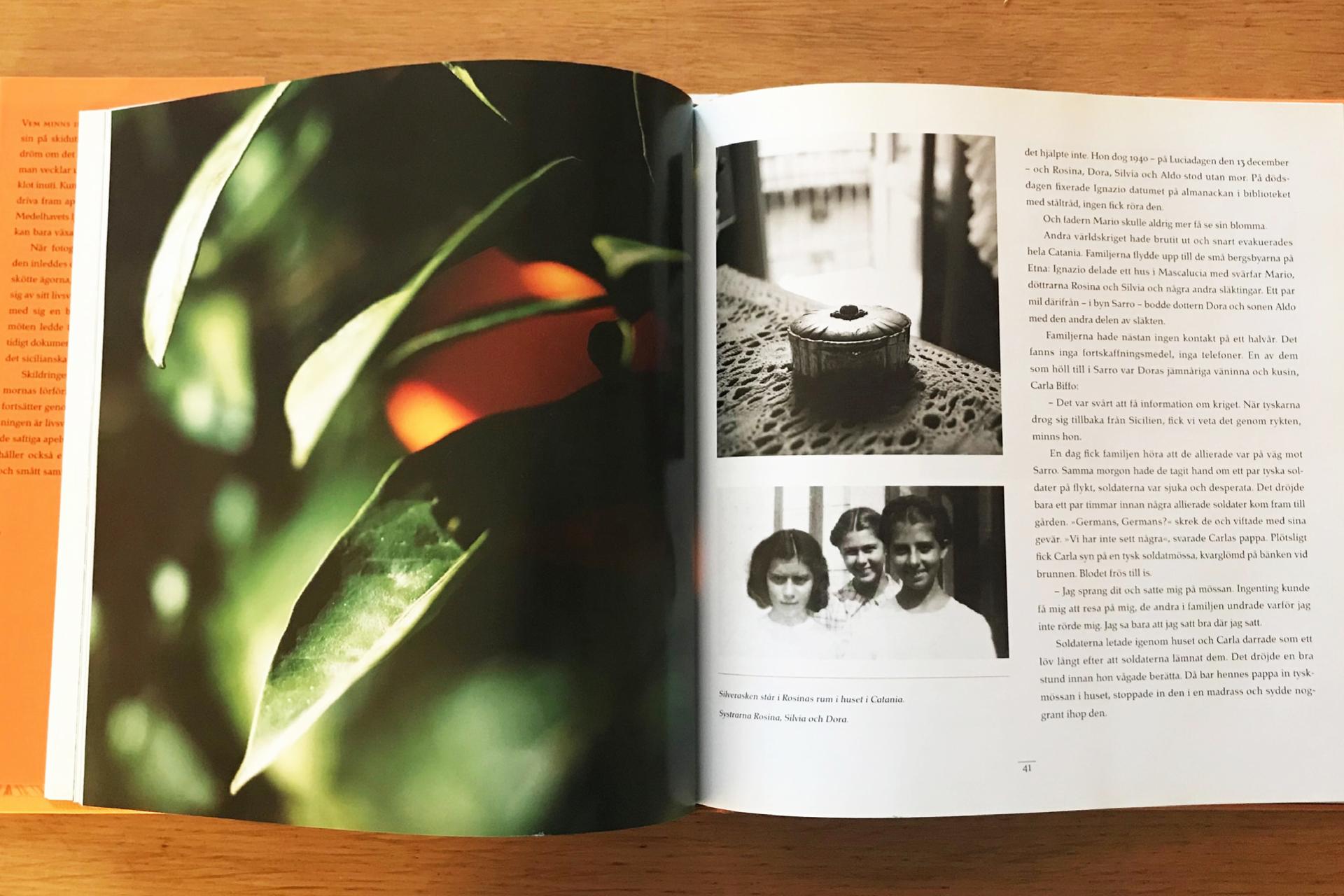 Apelsinboken_PAGE-5