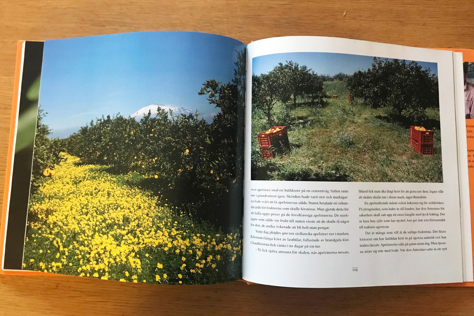 Apelsinboken_PAGE-9